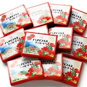 トロピカルチョコレート(12個入)まとめ買い12点Set